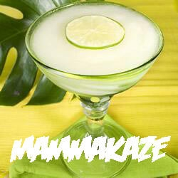 recipe-for-a-frozen-lime-daiquiri-to-wash-away-all-the-mommy-guilt_0